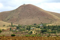 African landscapes. One tree hill in Ethiopia Royalty Free Stock Photography