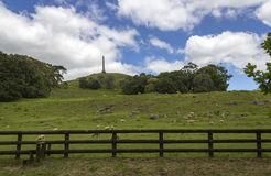One Tree Hill Park Auckland New Zealand Royalty Free Stock Photography