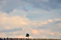 One tree and people marching on the horizon Royalty Free Stock Image