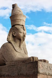 One of two Egyptian Sphinxes in Saint-Petersburg Stock Photography