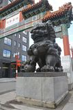 China Town Gate Lion of Portland, Oregon. This is one of two lions guarding the historic China Town gate of Portland, Oregon Stock Photography