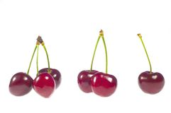 One two three Cherries with stalk royalty free stock photography