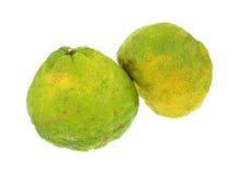 Uniq Fruits Front View Stock Images