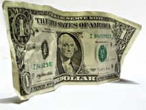 One US dollar Royalty Free Stock Photo