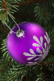 One violet christmas ball hanging on a tree. Royalty Free Stock Photo