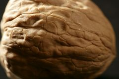One walnut with shells over black background Stock Photos