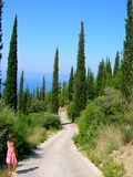 Only one way. Way between cypresses and little girl Royalty Free Stock Photo
