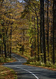 One-Way Autumn Drive Royalty Free Stock Photos