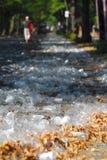 one-way för maraton för 2 berlin koppar Fotografering för Bildbyråer