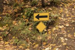 One way sign on side of road with colorful autumn leaves and large ferns stock photos