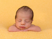 One week old baby boy. One week old newborn baby of mixed race sleeping on a soft yellow blanket royalty free stock image
