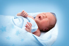 One week old crying baby in blanket on white background Royalty Free Stock Photos