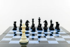 One white and blacks chess Stock Image