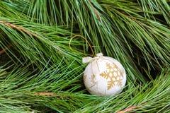 One white Christmas ball on  Christmas tree Royalty Free Stock Image