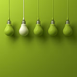 One white hanging light bulb different and standing out from green incandescent bulbs. On green background , leadership and different business creative idea Stock Image