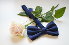 One white roses and bow tie. White background. ! Stock Photography