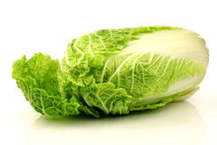 One whole chinese cabbage Stock Photography