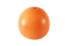One whole grapefruit fruits. On white background royalty free stock images