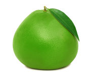 One whole green pomelo (isolated) Stock Images