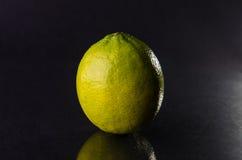 One whole lime on black background, horizontal shot Stock Images