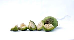 One whole and  one chopped walnut Royalty Free Stock Photo