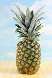 One whole pineapple Royalty Free Stock Photography