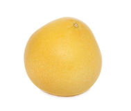 One whole pomelo (isolated) Stock Photography