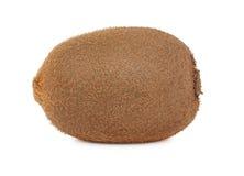 One whole ripe kiwi (isolated) Stock Image