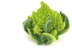 One whole Romanesco broccoli (Brassica oleracea). On a white background Stock Photo