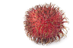 One whole single rambutan Stock Images