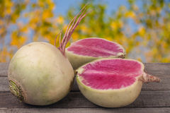 One whole and sliced watermelon radish on a wooden table with blurred garden background.  Royalty Free Stock Photos