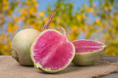 One whole and sliced watermelon radish on a wooden table with blurred garden background.  Stock Photos
