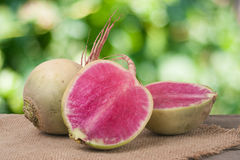 One whole and sliced watermelon radish on a wooden table with blurred garden background.  Royalty Free Stock Images
