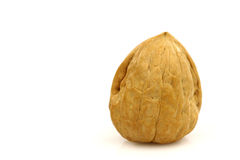 One whole walnut Stock Photography