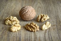 One whole walnut with kernels on wooden background stock photos