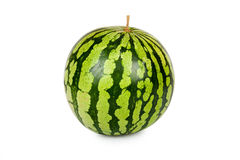 One whole Watermelon Stock Images