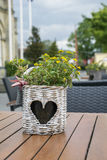 One wicker flowerpot with heart-shape pattern with yellow flowers is standing on the table Stock Photography