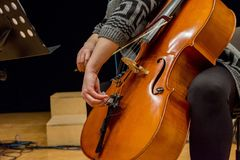 One woman adjusting her cello stock image