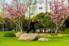 One woman exercising tai chi gucheng park shanghai china. Shanghai, China - April 9, 2013: one old woman  exercising tai chi with traditional costume in gucheng Stock Photos