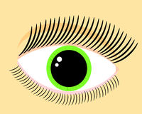 Green woman eye Royalty Free Stock Photos
