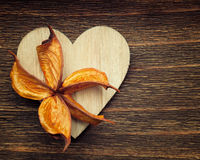 One wooden heart with an old flower placed Stock Image