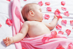 The one-year baby sleeping and wrapped pink flower petals. Royalty Free Stock Photography