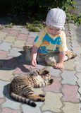 One year boy playing with cat. In the  park outdoor Royalty Free Stock Photography
