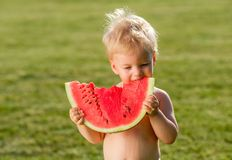 One year old baby boy eating watermelon in the garden. Portrait of toddler child outdoors. Rural scene with one year old baby boy eating watermelon slice in the Stock Photography