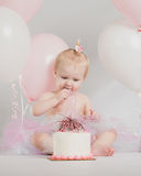 One Year Old Birthday Portraits with Smash Cake Stock Photos