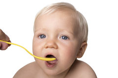 One year old boy. Eating with a plastic spoon Royalty Free Stock Image