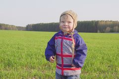One year old boy farmer standing in the field with young wheat.  stock photo