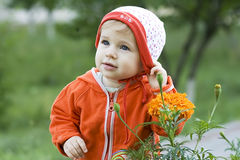 One year old child. Portrait with flower Royalty Free Stock Photo