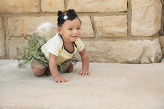 One year old crawling in a tutu Stock Photos
