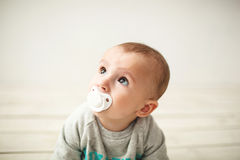 One year old cute baby boy sitting on wooden floor Royalty Free Stock Photo